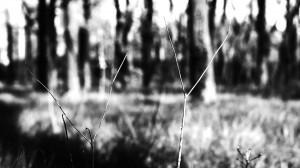 waffe_still_07
